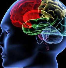 引起青少年癫痫的病因有哪些