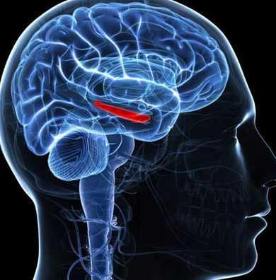 癫痫患者有哪些注意事项